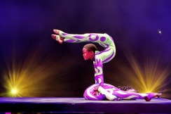 Contortionists Universoul Circus