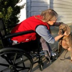disabilities_250x251