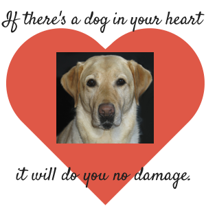 If there's a dog in your heart it will do no damage.