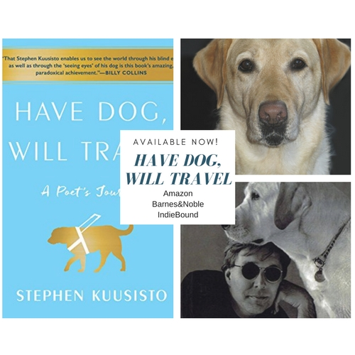 Have Dog, Will Travel by Stephen Kuusisto